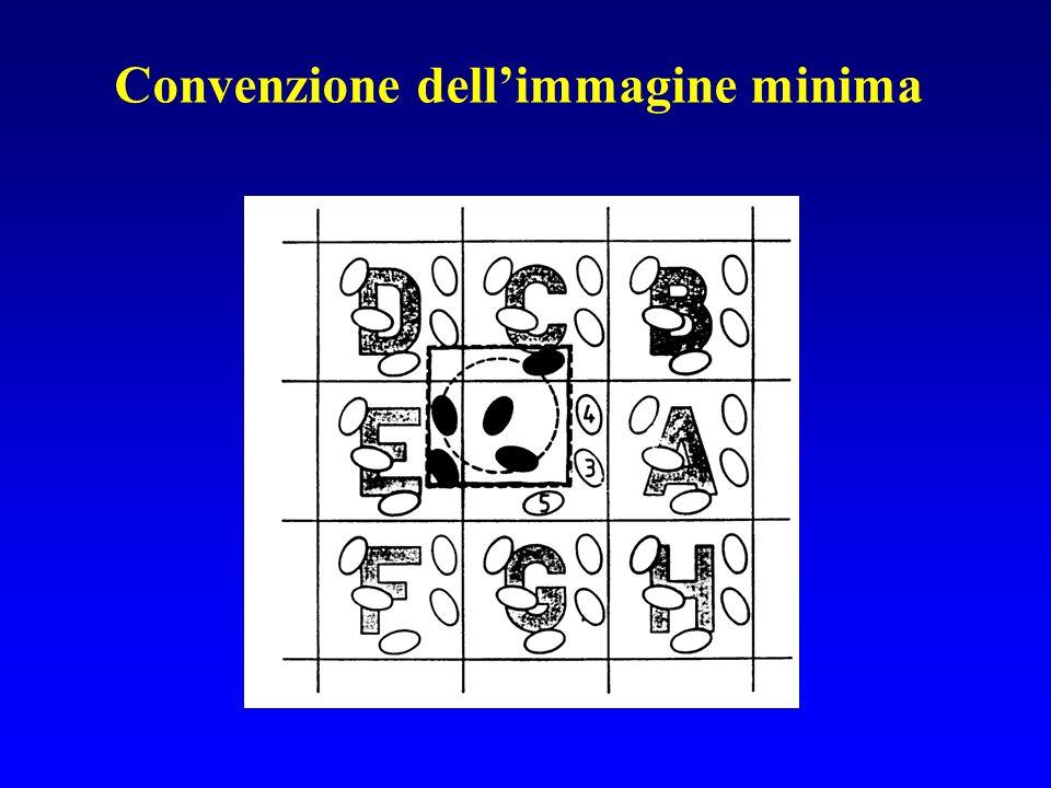 Convenzione dellimmagine minima