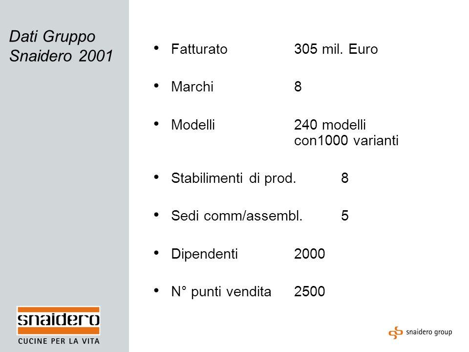 Dati Gruppo Snaidero 2001 Fatturato305 mil. Euro Marchi8 Modelli240 modelli con1000 varianti Stabilimenti di prod.8 Sedi comm/assembl.5 Dipendenti2000
