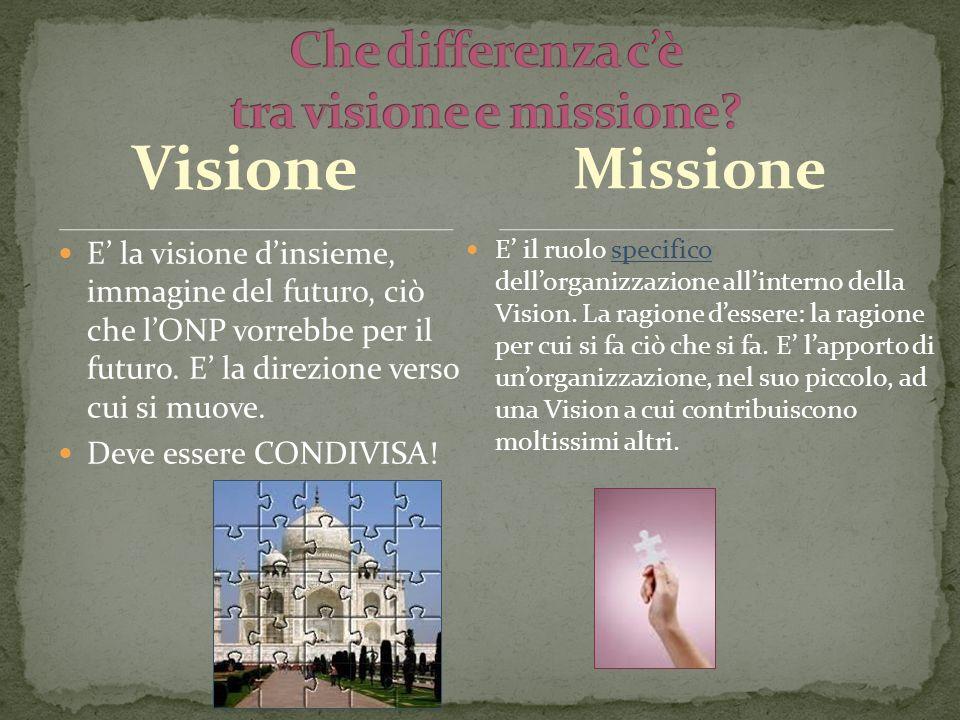 Visione E la visione dinsieme, immagine del futuro, ciò che lONP vorrebbe per il futuro.