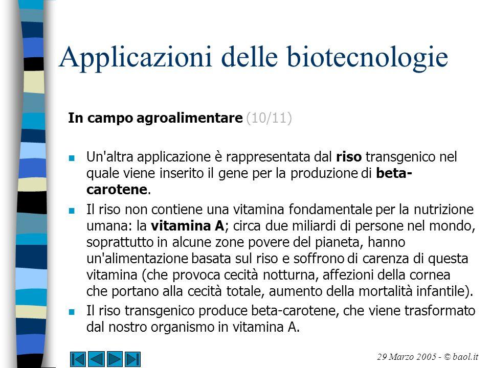 Applicazioni delle biotecnologie In campo agroalimentare (10/11) n Un'altra applicazione è rappresentata dal riso transgenico nel quale viene inserito