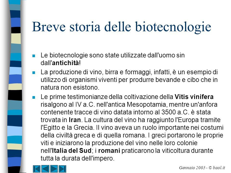 Breve storia delle biotecnologie La produzione di formaggi, burro e yogurt (1/4) n La preparazione dei derivati del latte si basa sull utilizzo dei batteri lattici.