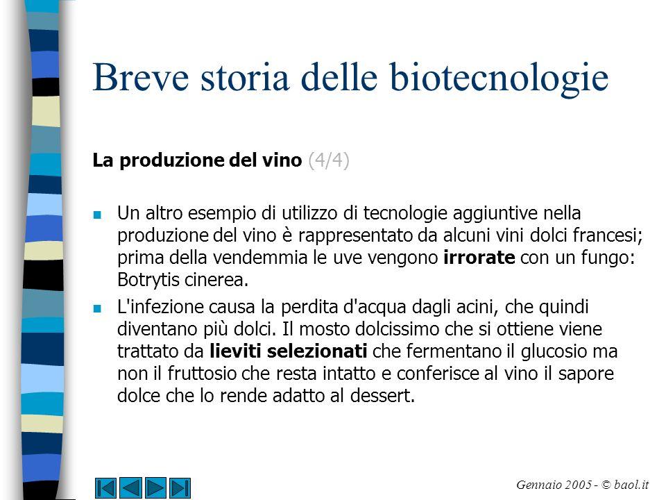 Breve storia delle biotecnologie La produzione della birra (1/3) n La produzione della birra avviene a partire dall orzo; in alcuni paesi si utilizzano anche il riso ed il mais.