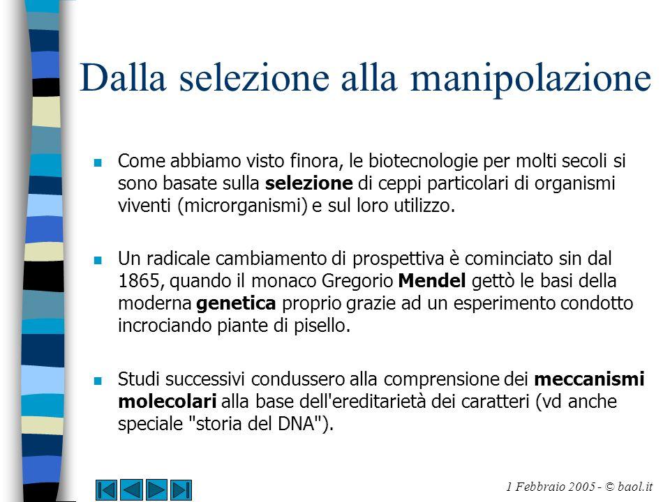 Dalla selezione alla manipolazione n Come abbiamo visto finora, le biotecnologie per molti secoli si sono basate sulla selezione di ceppi particolari