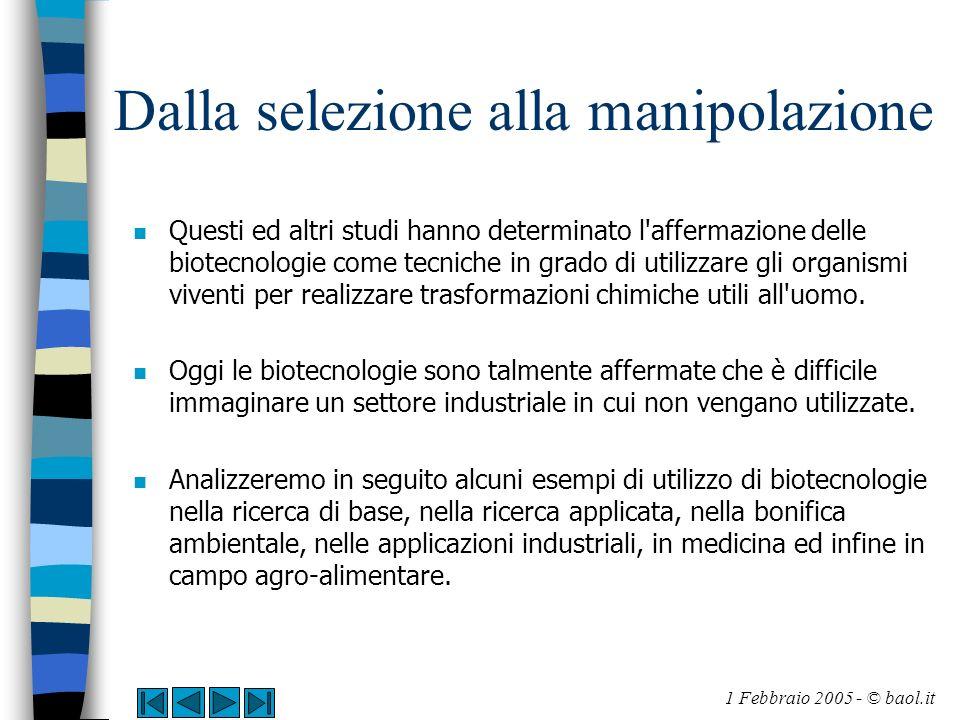Dalla selezione alla manipolazione n Questi ed altri studi hanno determinato l'affermazione delle biotecnologie come tecniche in grado di utilizzare g