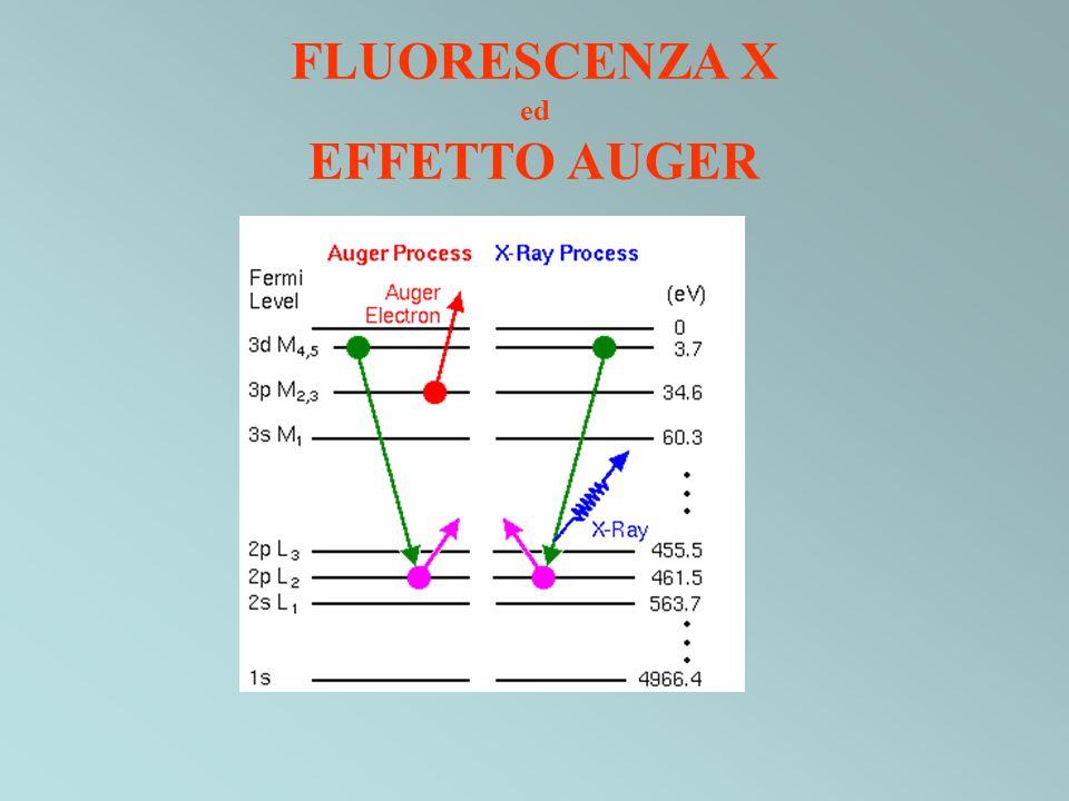 Probabilità relative di rilassamento di una buca nel guscio K Gli elementi leggeri hanno una sezione durto piccola per lemissione di raggi X Numero atomico Probabilità Emissione di elettrone Auger Emissione di fotone X