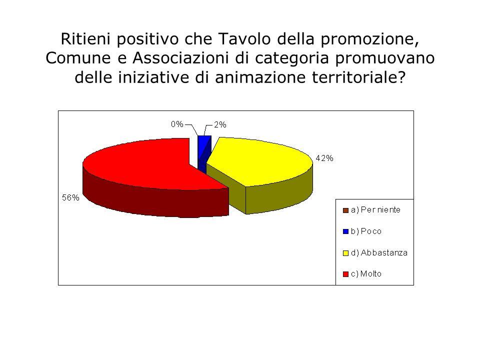 Ritieni positivo che Tavolo della promozione, Comune e Associazioni di categoria promuovano delle iniziative di animazione territoriale
