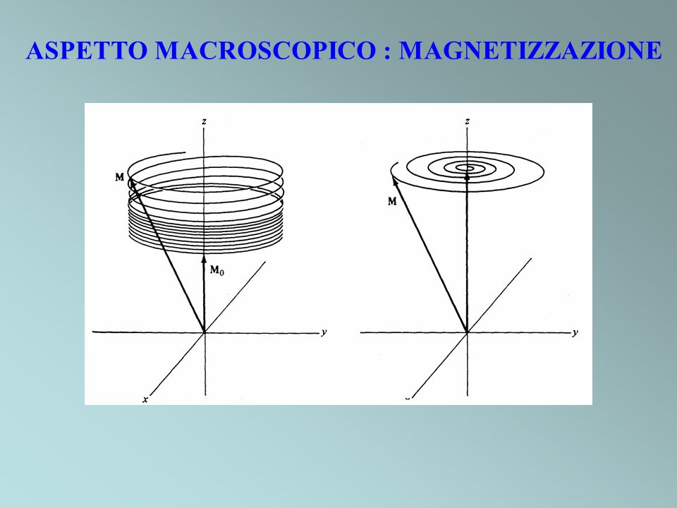 ASPETTO MACROSCOPICO : MAGNETIZZAZIONE
