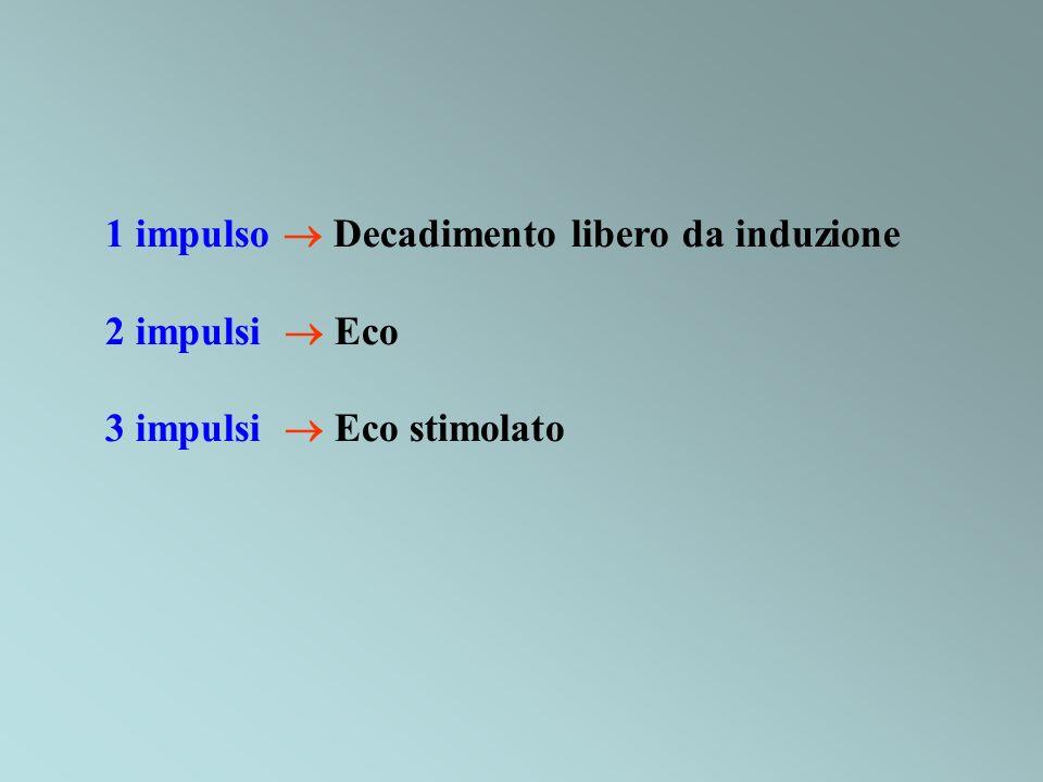 1 impulso Decadimento libero da induzione 2 impulsi Eco 3 impulsi Eco stimolato