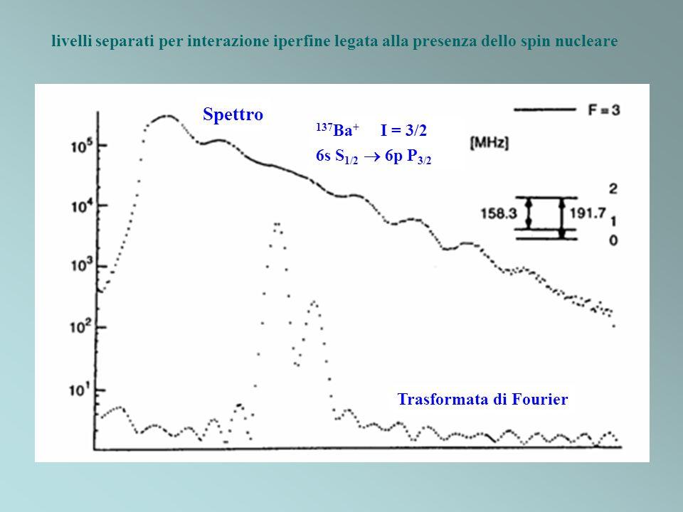 Trasformata di Fourier Spettro 137 Ba + I = 3/2 6s S 1/2 6p P 3/2 livelli separati per interazione iperfine legata alla presenza dello spin nucleare