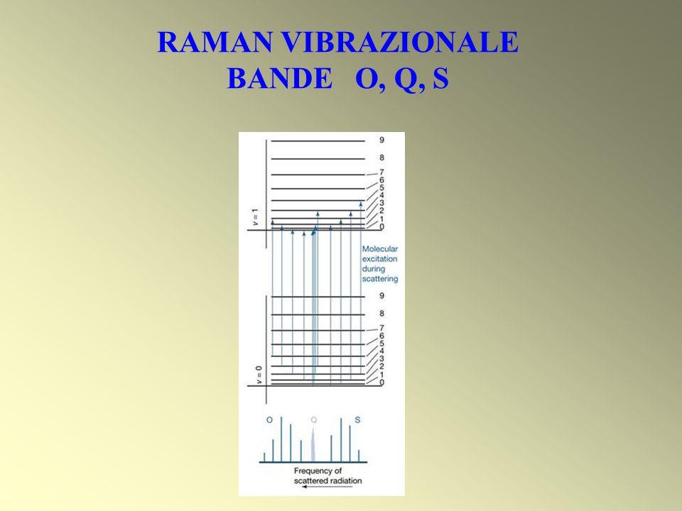 RAMAN VIBRAZIONALE BANDE O, Q, S
