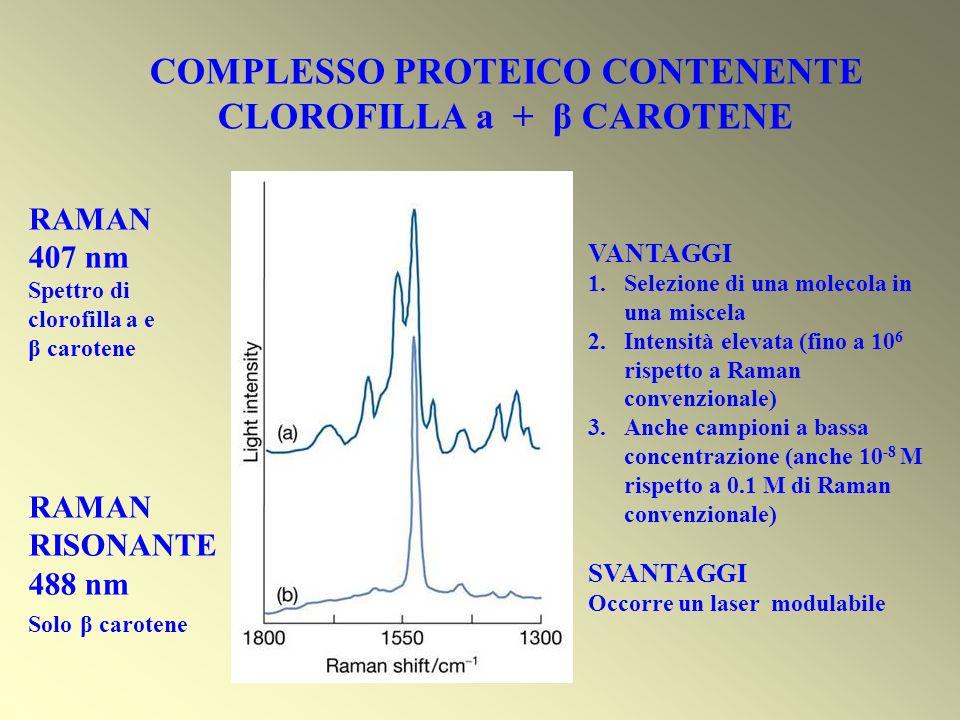 RAMAN 407 nm Spettro di clorofilla a e β carotene RAMAN RISONANTE 488 nm Solo β carotene COMPLESSO PROTEICO CONTENENTE CLOROFILLA a + β CAROTENE VANTA