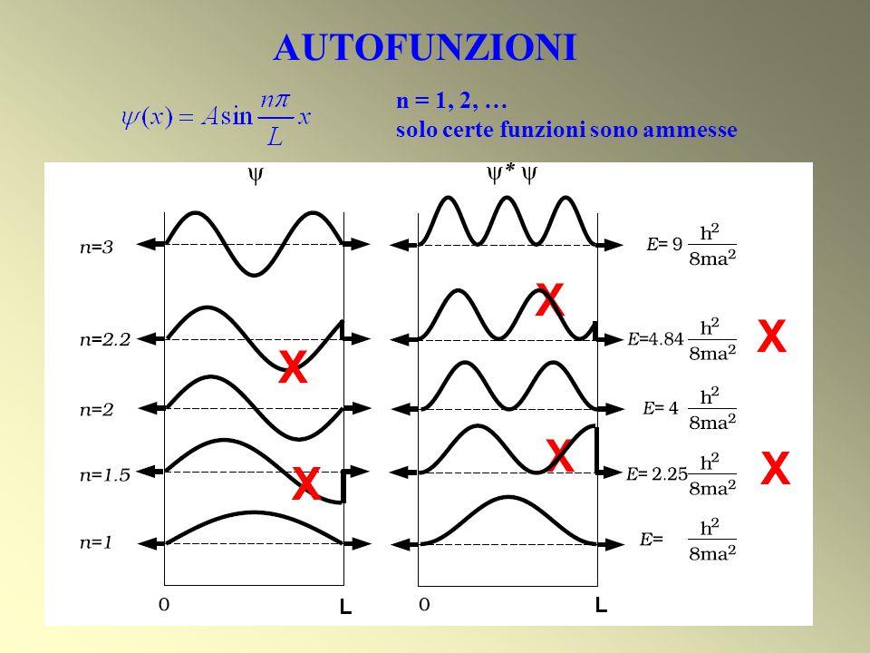 n = 1, 2, … solo certe funzioni sono ammesse L L AUTOFUNZIONI