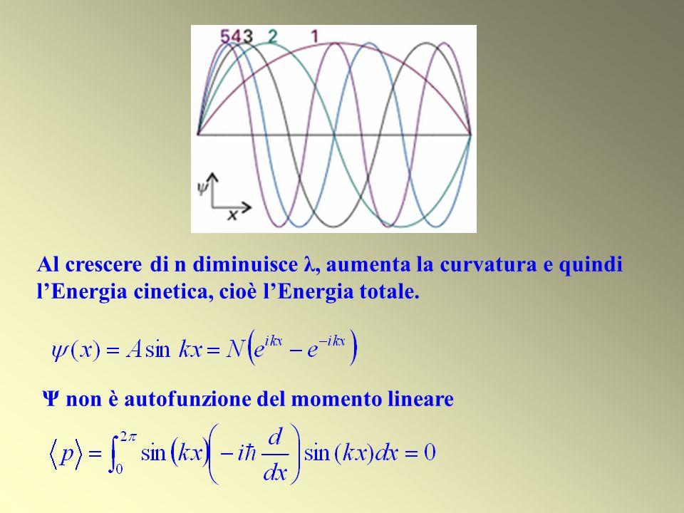 Al crescere di n diminuisce λ, aumenta la curvatura e quindi lEnergia cinetica, cioè lEnergia totale. Ψ non è autofunzione del momento lineare