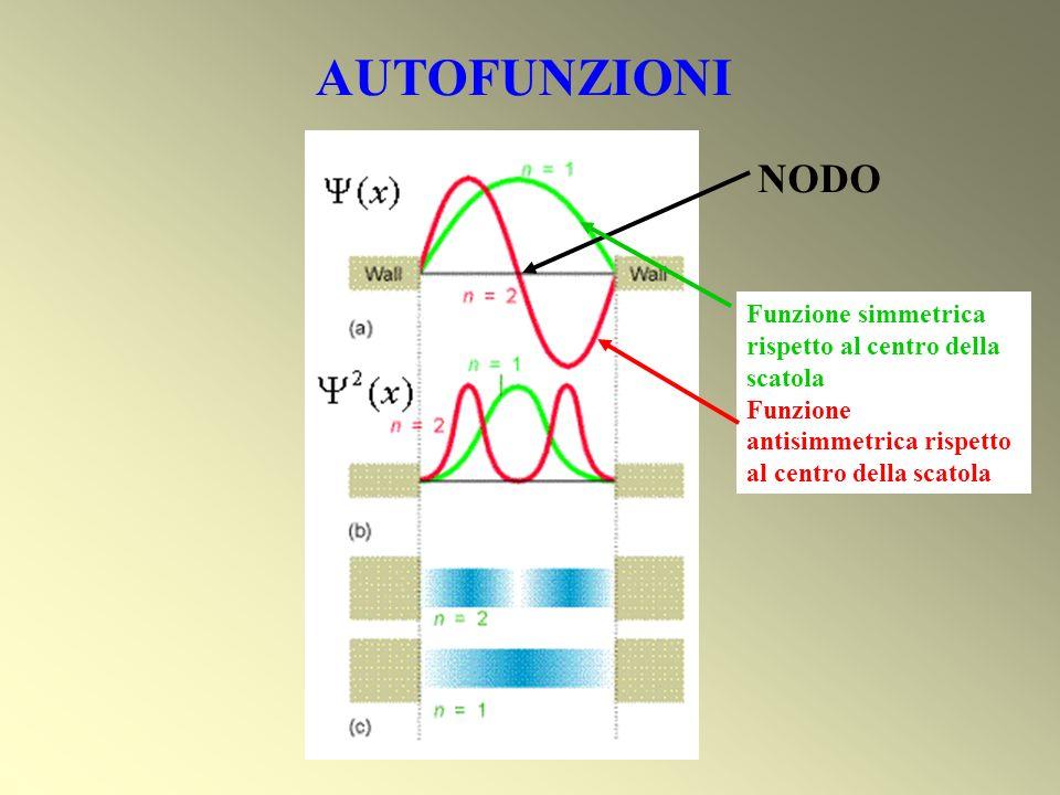 AUTOFUNZIONI NODO Funzione simmetrica rispetto al centro della scatola Funzione antisimmetrica rispetto al centro della scatola