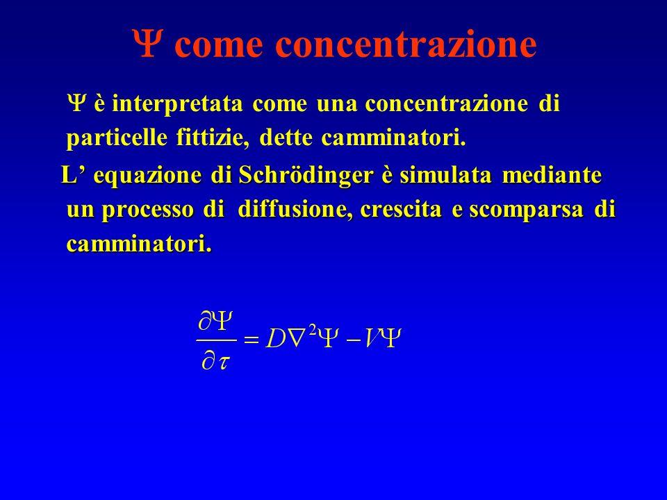 come concentrazione è interpretata come una concentrazione di particelle fittizie, dette camminatori. L equazione di Schrödinger è simulata mediante u