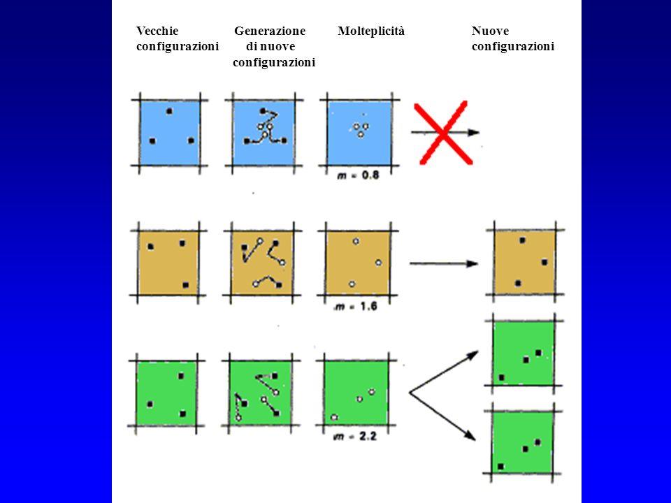 The DMC algorithm Vecchie Generazione MolteplicitàNuove configurazioni di nuoveconfigurazioni configurazioni