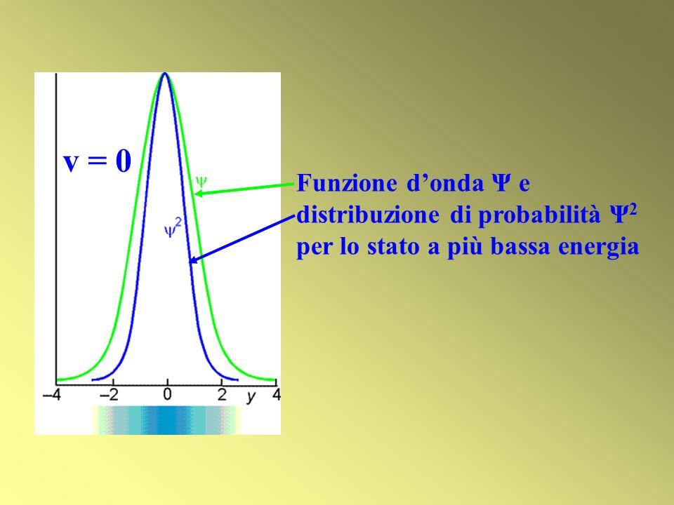 Funzione donda Ψ e distribuzione di probabilità Ψ 2 per lo stato a più bassa energia v = 0