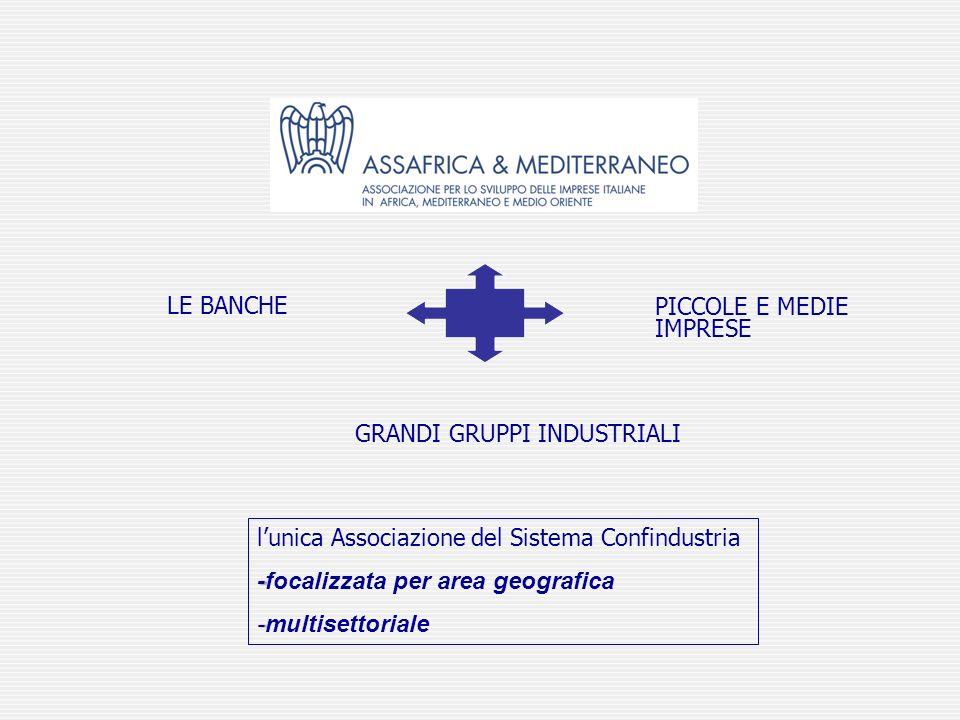 lunica Associazione del Sistema Confindustria --focalizzata per area geografica --multisettoriale PICCOLE E MEDIE IMPRESE LE BANCHE GRANDI GRUPPI INDU