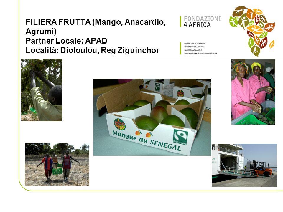 FILIERA FRUTTA (Mango, Anacardio, Agrumi) Partner Locale: APAD Località: Dioloulou, Reg Ziguinchor