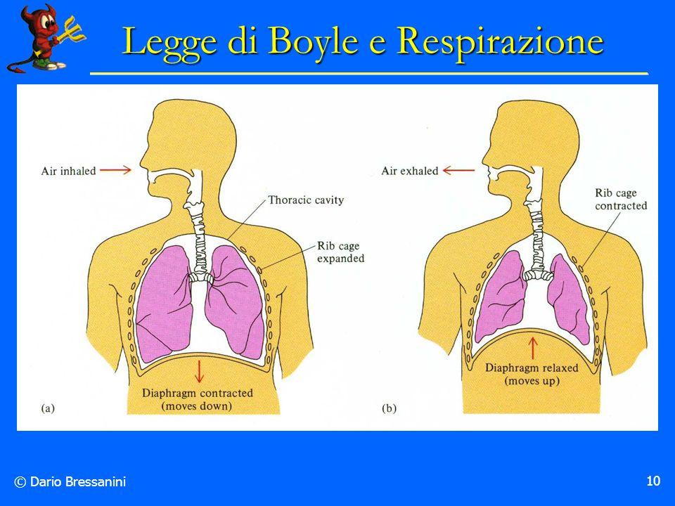 © Dario Bressanini 10 Legge di Boyle e Respirazione