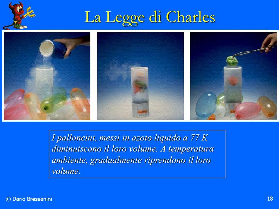 © Dario Bressanini 18 I palloncini, messi in azoto liquido a 77 K diminuiscono il loro volume. A temperatura ambiente, gradualmente riprendono il loro