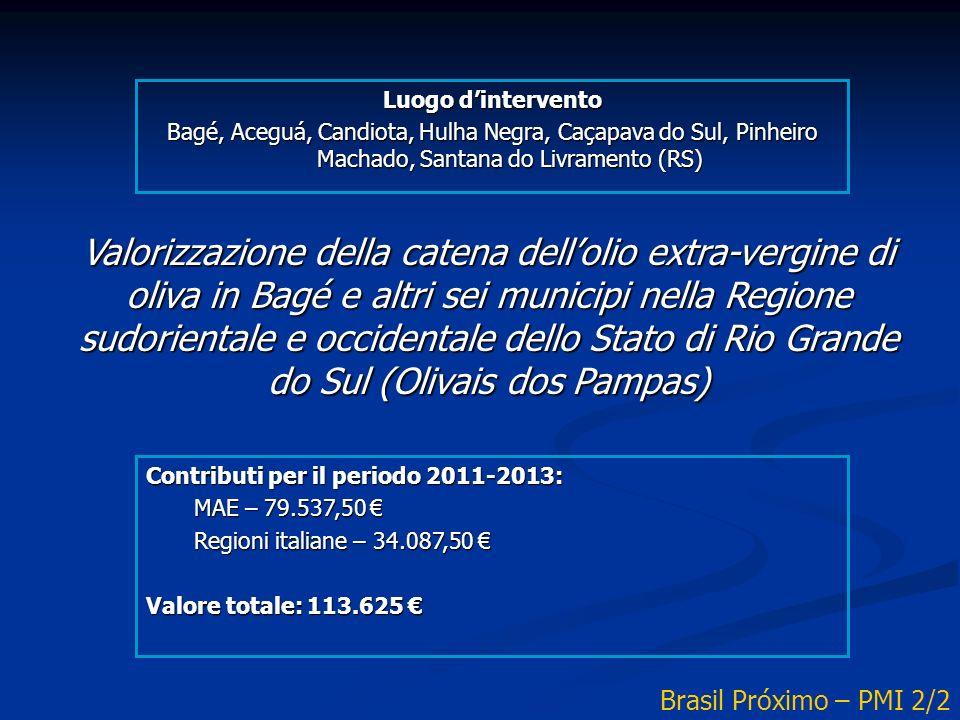 Valorizzazione della catena dellolio extra-vergine di oliva in Bagé e altri sei municipi nella Regione sudorientale e occidentale dello Stato di Rio Grande do Sul (Olivais dos Pampas) Contributi per il periodo 2011-2013: MAE – 79.537,50 MAE – 79.537,50 Regioni italiane – 34.087,50 Regioni italiane – 34.087,50 Valore totale: 113.625 Valore totale: 113.625 Brasil Próximo – PMI 2/2 Luogo dintervento Bagé, Aceguá, Candiota, Hulha Negra, Caçapava do Sul, Pinheiro Machado, Santana do Livramento (RS)