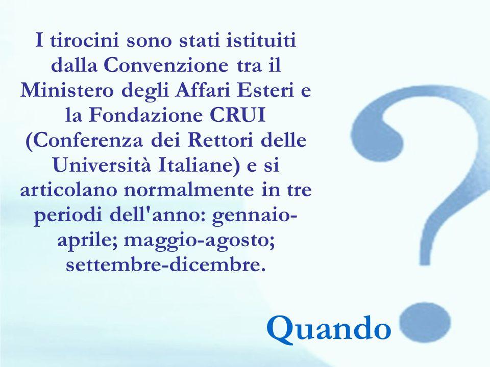 I tirocini sono stati istituiti dalla Convenzione tra il Ministero degli Affari Esteri e la Fondazione CRUI (Conferenza dei Rettori delle Università I