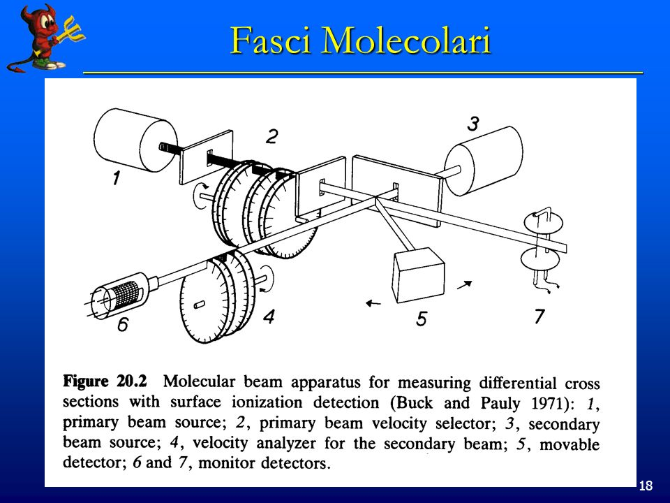18 Fasci Molecolari