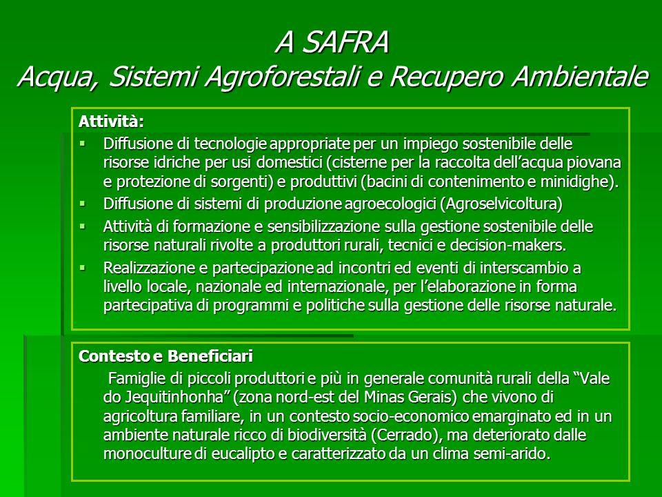 Contesto e Beneficiari Famiglie di piccoli produttori e più in generale comunità rurali della Vale do Jequitinhonha (zona nord-est del Minas Gerais) c