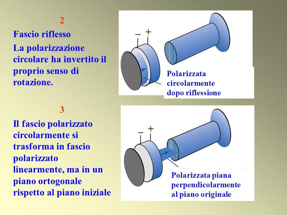 2 Fascio riflesso La polarizzazione circolare ha invertito il proprio senso di rotazione. 3 Il fascio polarizzato circolarmente si trasforma in fascio
