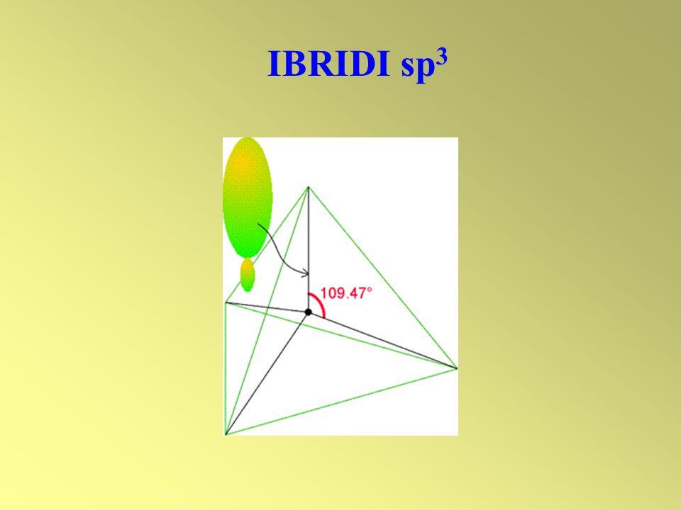 IBRIDI sp 3