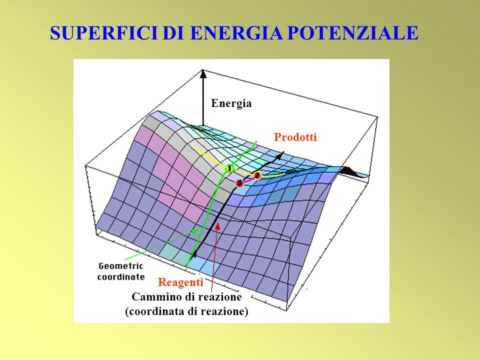 SUPERFICI DI ENERGIA POTENZIALE Energia Prodotti Reagenti Cammino di reazione (coordinata di reazione)