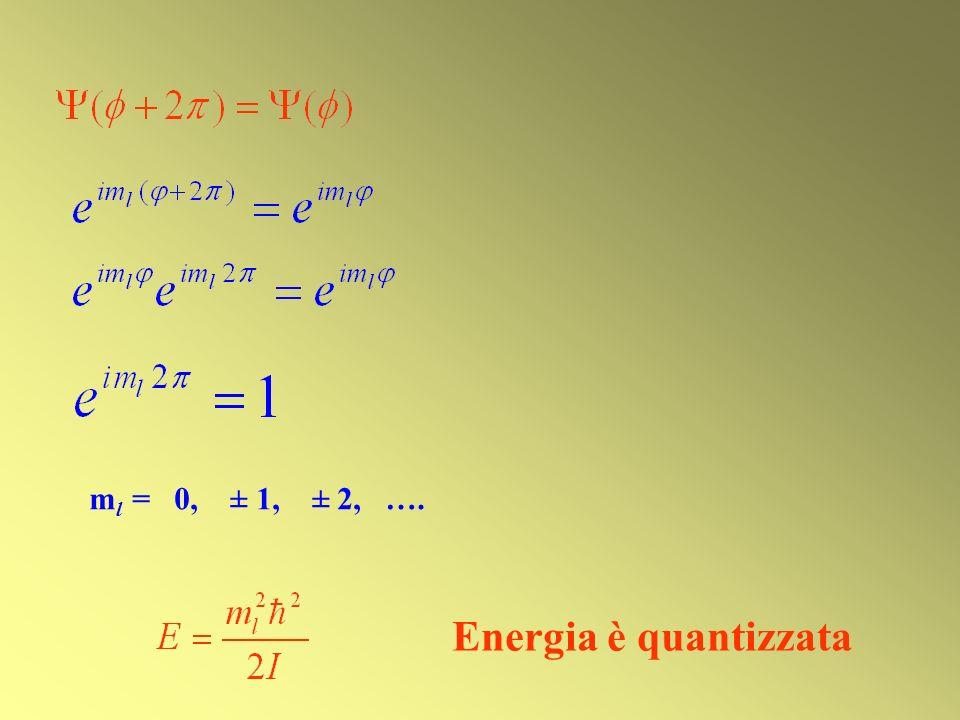 m l = 0, ± 1, ± 2, …. Energia è quantizzata