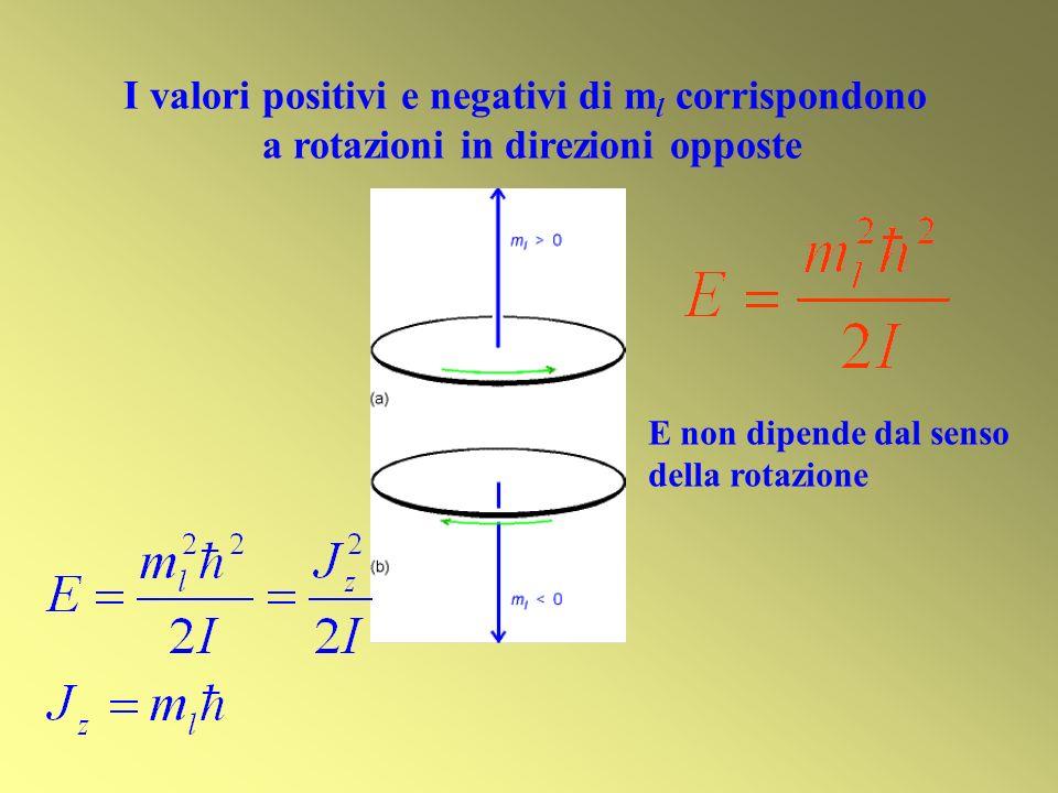 I valori positivi e negativi di m l corrispondono a rotazioni in direzioni opposte E non dipende dal senso della rotazione
