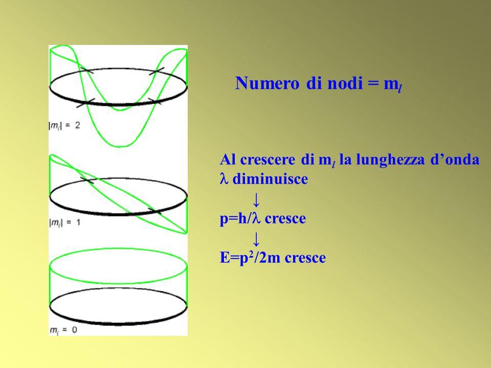 Numero di nodi = m l Al crescere di m l la lunghezza donda diminuisce p=h/ cresce E=p 2 /2m cresce