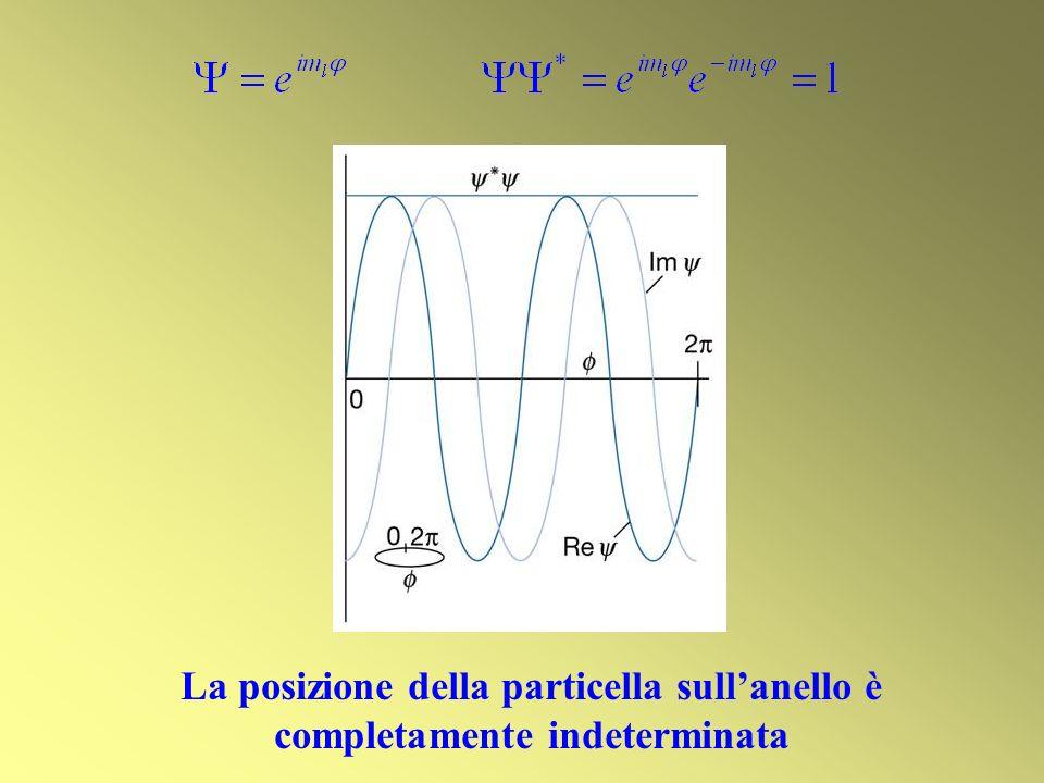 La posizione della particella sullanello è completamente indeterminata