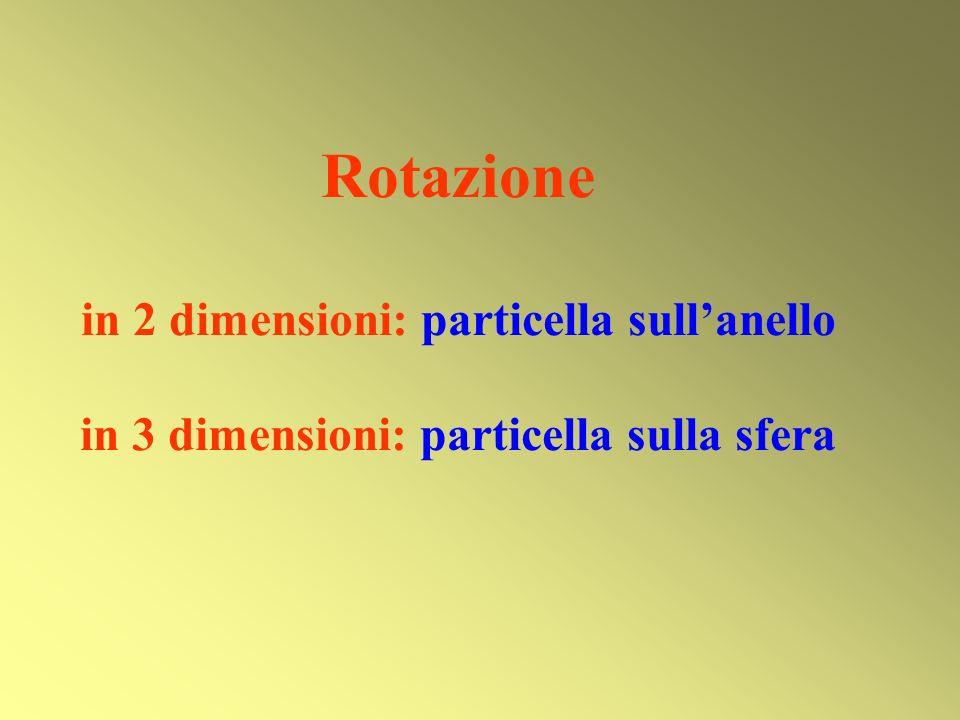Rotazione in 2 dimensioni: particella sullanello in 3 dimensioni: particella sulla sfera