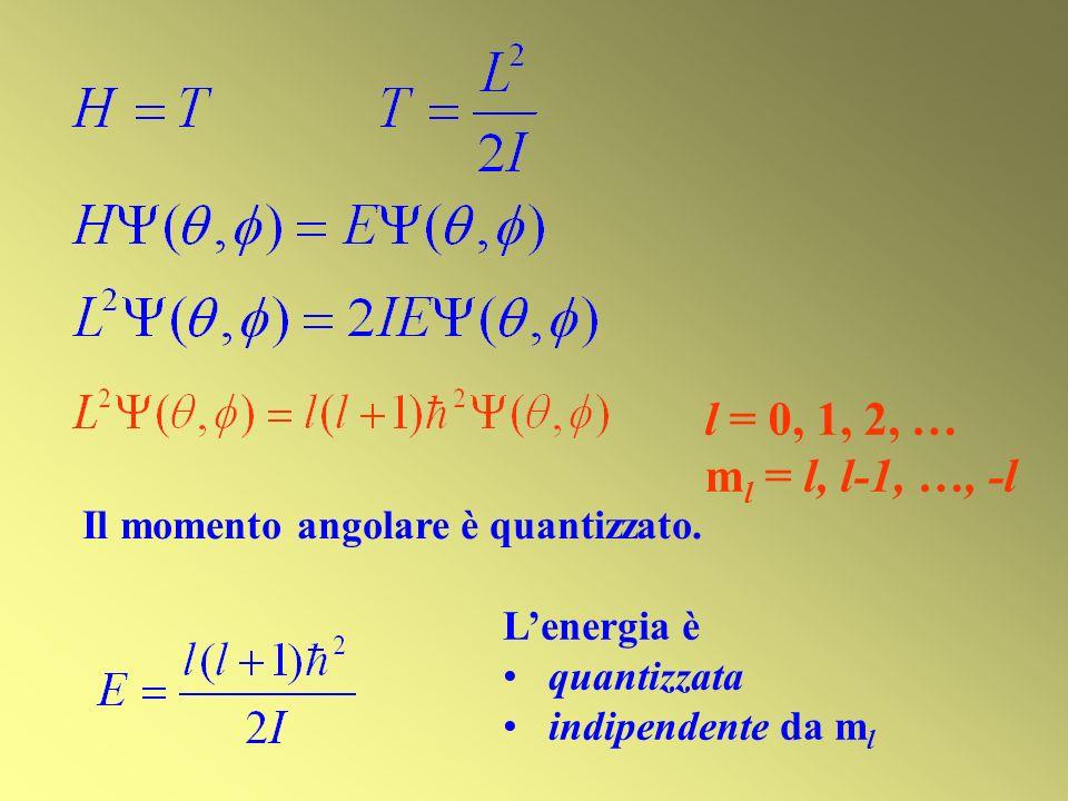 Lenergia è quantizzata indipendente da m l l = 0, 1, 2, … m l = l, l-1, …, -l Il momento angolare è quantizzato.