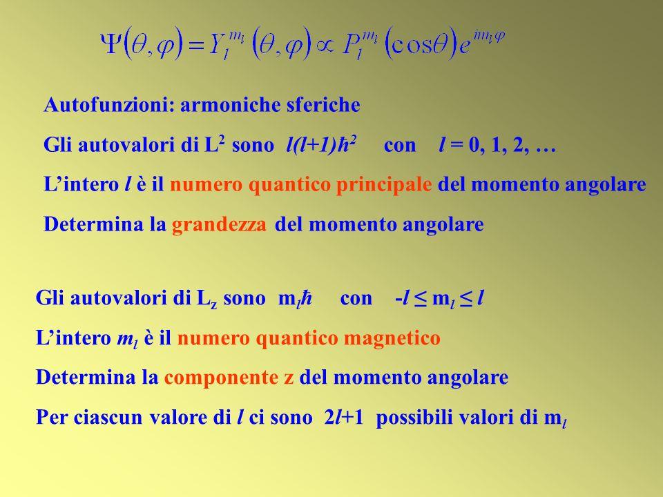 Autofunzioni: armoniche sferiche Gli autovalori di L 2 sono l(l+1)ħ 2 con l = 0, 1, 2, … Lintero l è il numero quantico principale del momento angolar