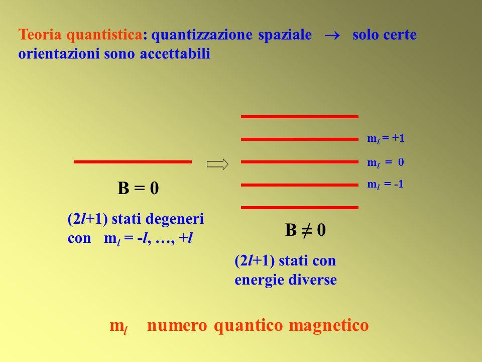 B = 0 (2l+1) stati degeneri con m l = -l, …, +l B 0 (2l+1) stati con energie diverse m l = 0 m l = -1 m l = +1 m l numero quantico magnetico Teoria qu