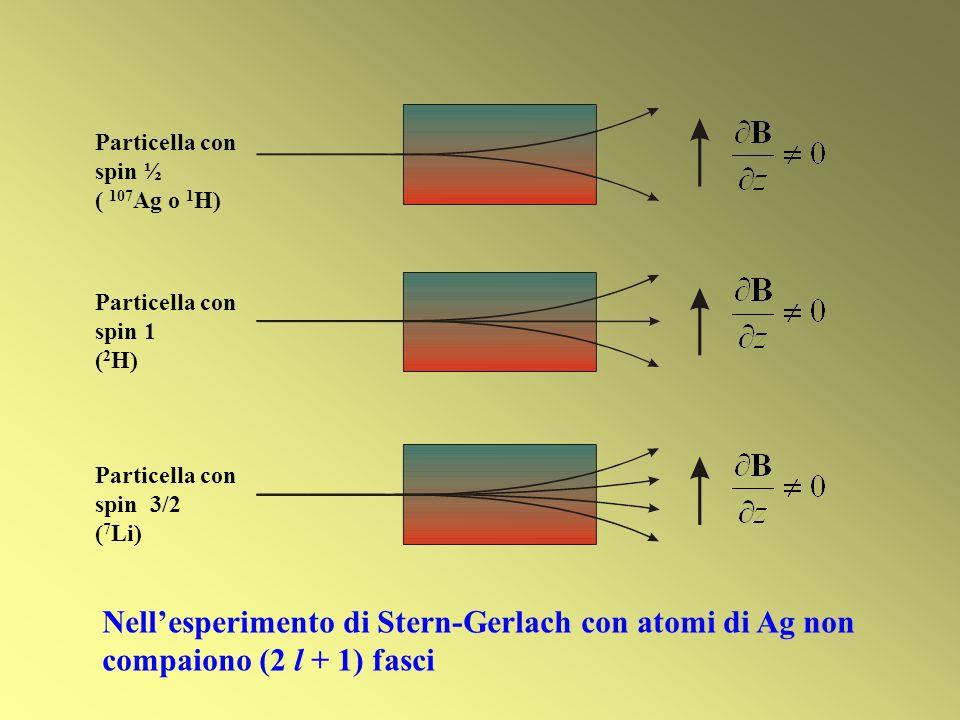 Particella con spin ½ ( 107 Ag o 1 H) Particella con spin 1 ( 2 H) Particella con spin 3/2 ( 7 Li) Nellesperimento di Stern-Gerlach con atomi di Ag no