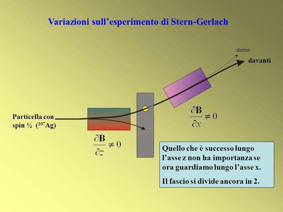 Quello che è successo lungo lasse z non ha importanza se ora guardiamo lungo lasse x. Il fascio si divide ancora in 2. davanti dietro Variazioni sulle