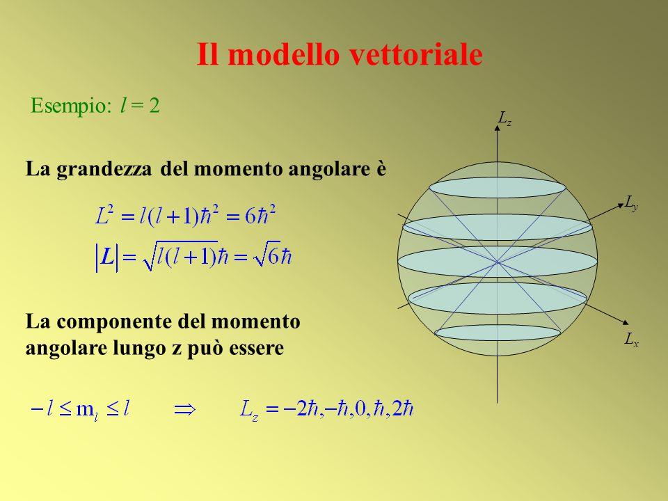 Il modello vettoriale Esempio: l = 2 La grandezza del momento angolare è La componente del momento angolare lungo z può essere LxLx LyLy LzLz
