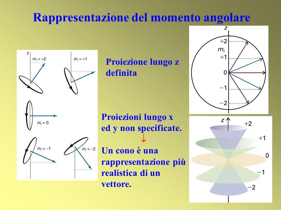 Rappresentazione del momento angolare Proiezione lungo z definita Proiezioni lungo x ed y non specificate. Un cono è una rappresentazione più realisti