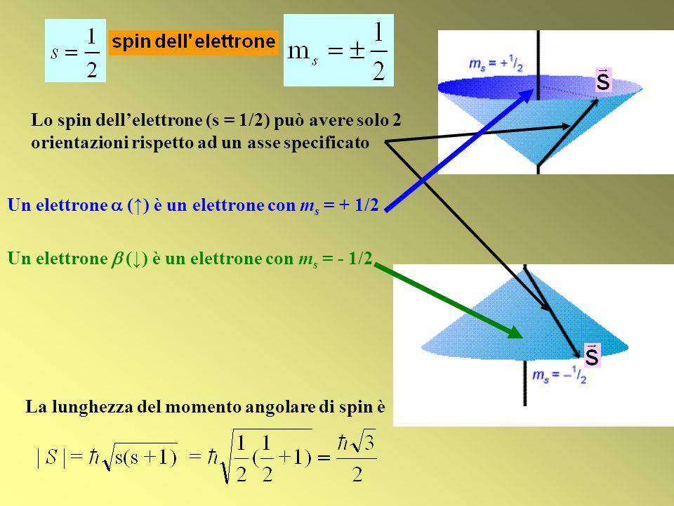 La lunghezza del momento angolare di spin è Un elettrone () è un elettrone con m s = - 1/2 Un elettrone () è un elettrone con m s = + 1/2 Lo spin dell