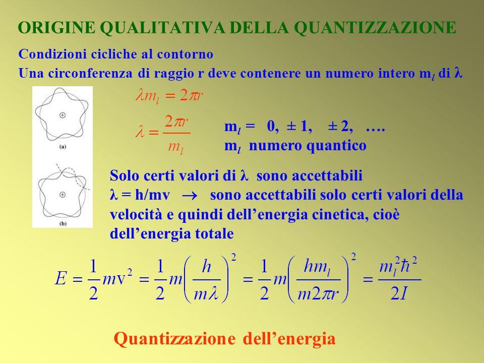 ORIGINE QUALITATIVA DELLA QUANTIZZAZIONE m l = 0, ± 1, ± 2, …. m l numero quantico Solo certi valori di λ sono accettabili λ = h/mv sono accettabili s
