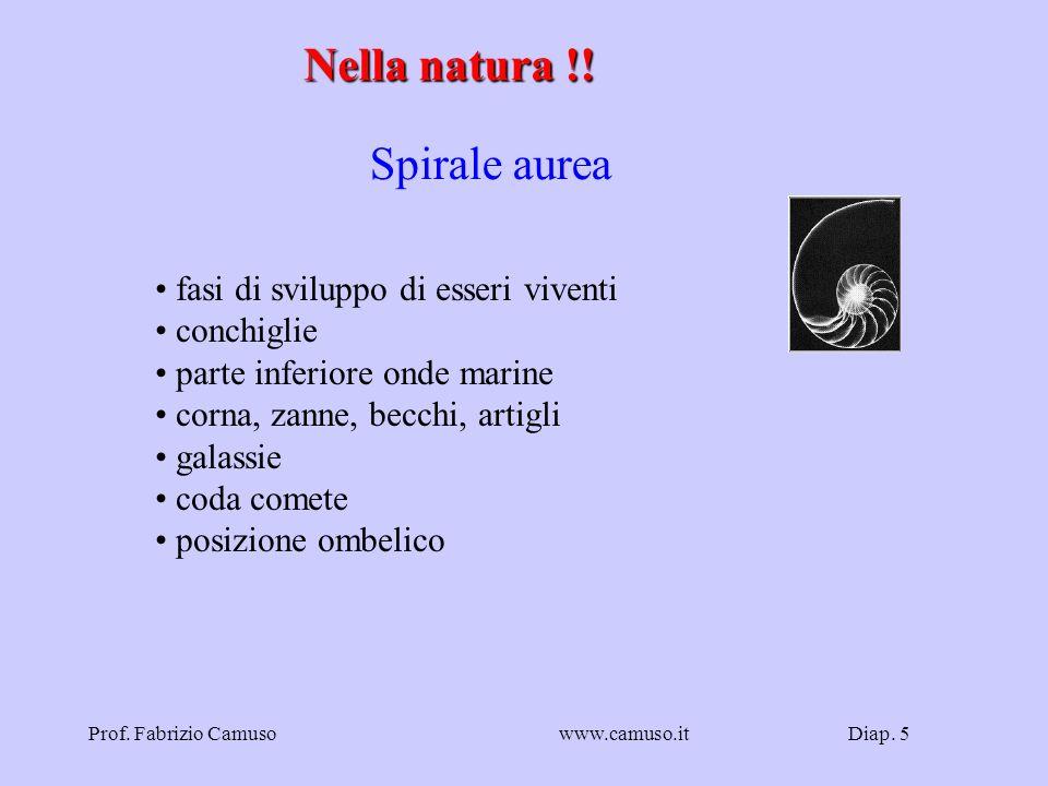 Diap. 6Prof. Fabrizio Camusowww.camuso.it Fibonacci - 1 0 1 1 2 3 5 8 13 21 34 …