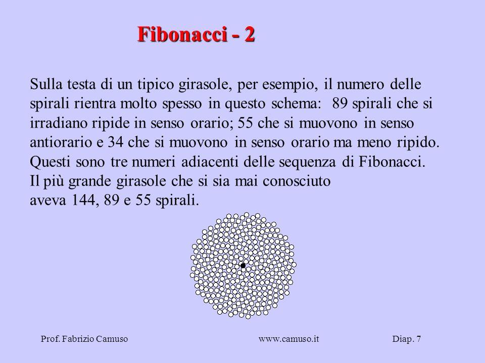 Diap. 7Prof. Fabrizio Camusowww.camuso.it Fibonacci - 2 Sulla testa di un tipico girasole, per esempio, il numero delle spirali rientra molto spesso i