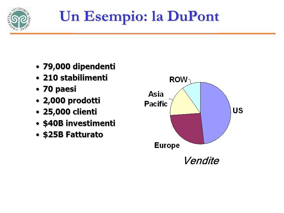Un Esempio: la DuPont 79,000 dipendenti79,000 dipendenti 210 stabilimenti210 stabilimenti 70 paesi70 paesi 2,000 prodotti2,000 prodotti 25,000 clienti25,000 clienti $40B investimenti$40B investimenti $25B Fatturato$25B Fatturato Vendite