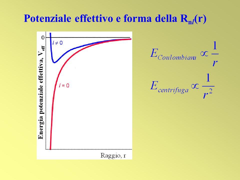 Potenziale effettivo e forma della R nl (r)